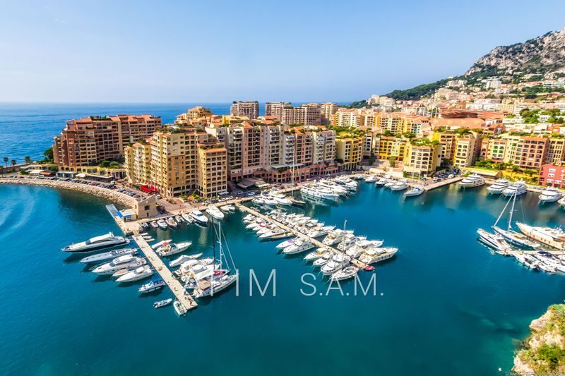 Apartment Monaco Fontvieille,  Rentals apartment  1 room   43 m²