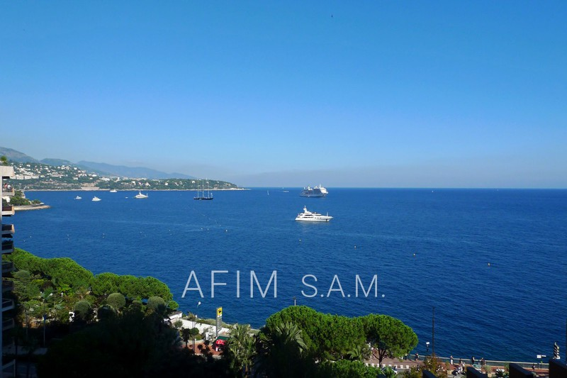 Apartment Monaco Carré d'or,  Rentals apartment  3 rooms   164 m²