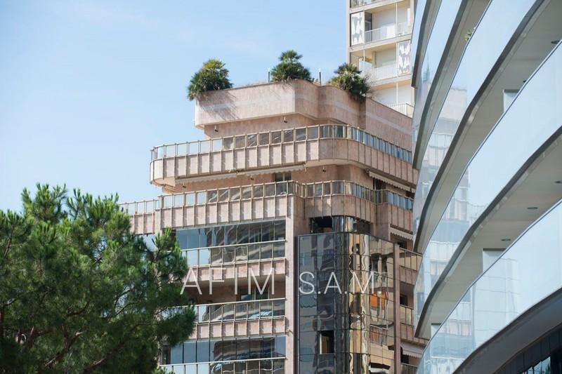 Apartment Monaco  Rentals apartment  3 rooms   135m²