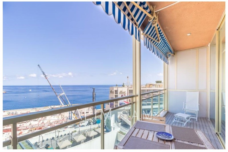 Apartment Monaco Carré d'or,  Rentals apartment  4 rooms   300 m²