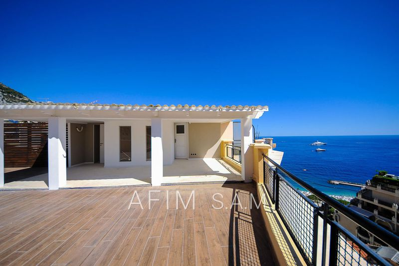Penthouse Monaco La rousse - saint roman,   to buy penthouse  4 rooms