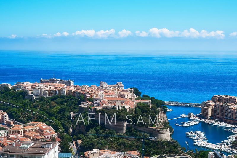 a2a48dfaae4acc Real estate Monaco by AFIM Real Estate Agent