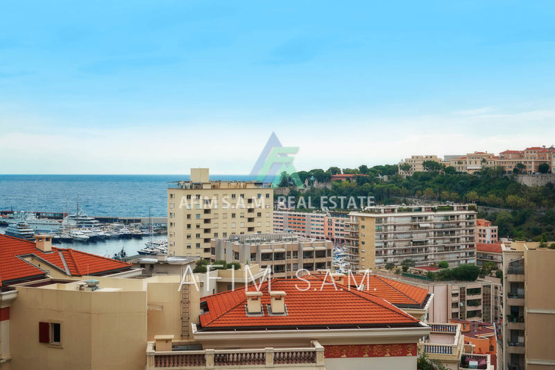 Apartment Monaco Condamine,   to buy apartment  4 rooms   193 m²