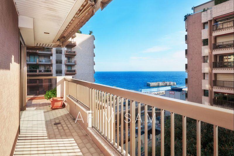 Photo n°4 - Vente appartement Monaco 98000 - 8 450 000 €