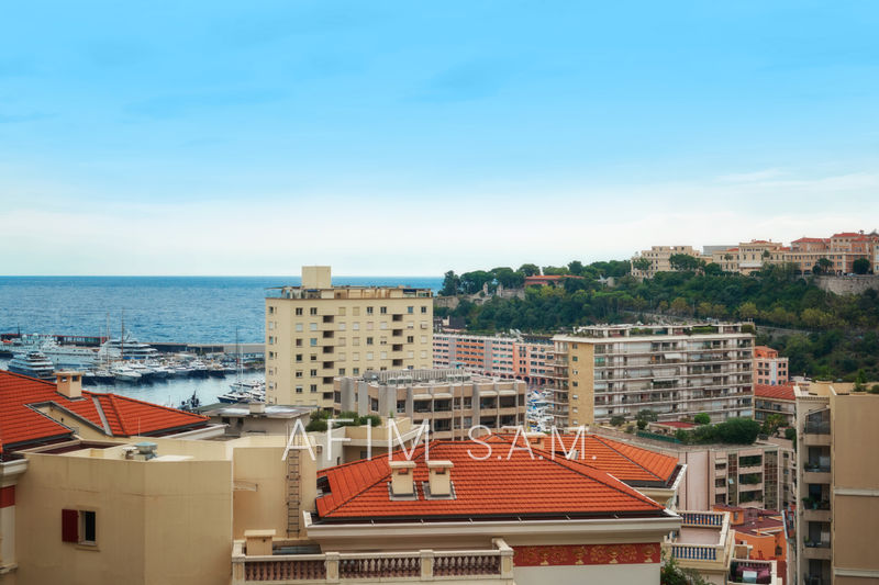 Apartment Monaco Sans logo ,   to buy apartment  4 rooms   193 m²