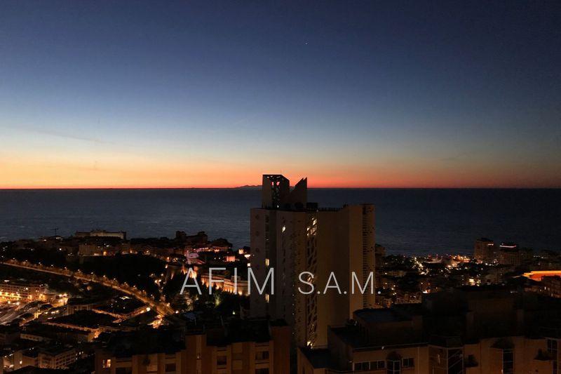 Photo n°5 - Vente appartement Monaco 98000 - 4 950 000 €