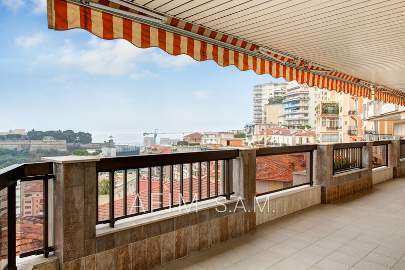 Apartment Monaco Jardin exotique,   to buy apartment  3 rooms   159 m²