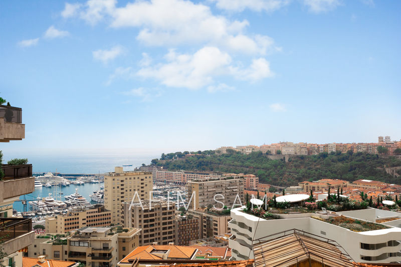 Apartment Monaco Jardin exotique,   to buy apartment  3 rooms   156 m²