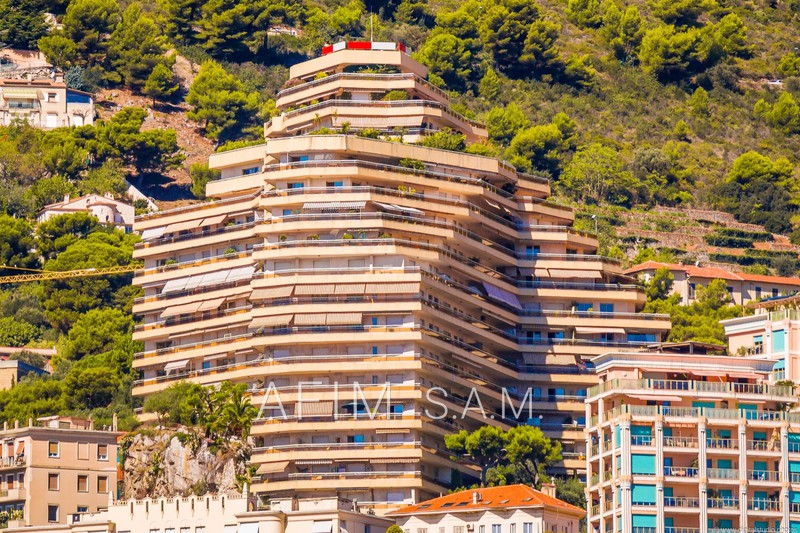 Apartment Monaco   to buy apartment  3 rooms   117 m²