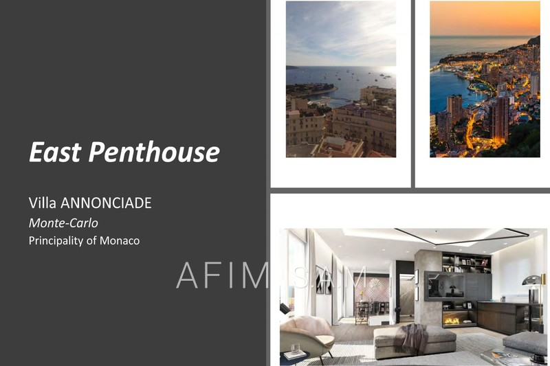 Apartment Monaco   to buy apartment  5 rooms   501 m²