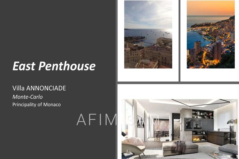 Appartement Monaco   achat appartement  5 pièces   501m²