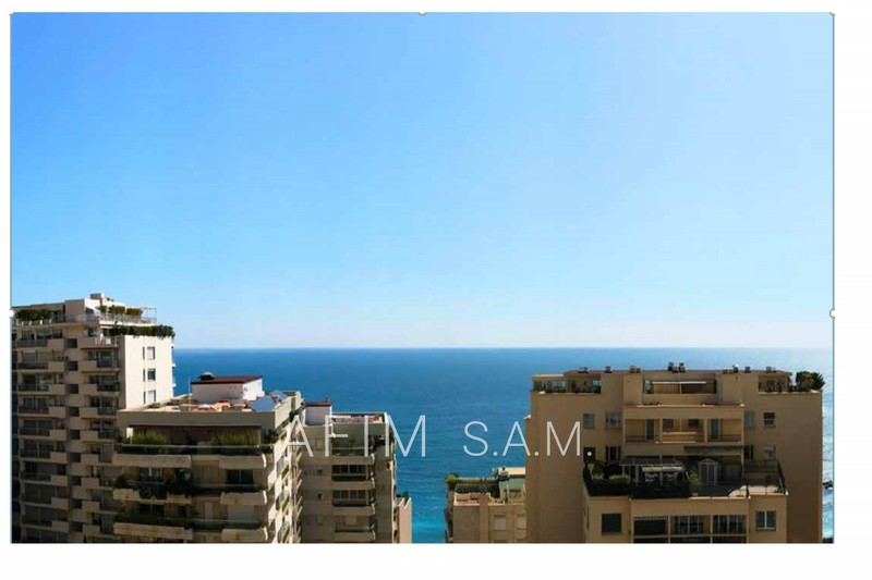 Appartement Monaco   achat appartement  2 pièces   80m²