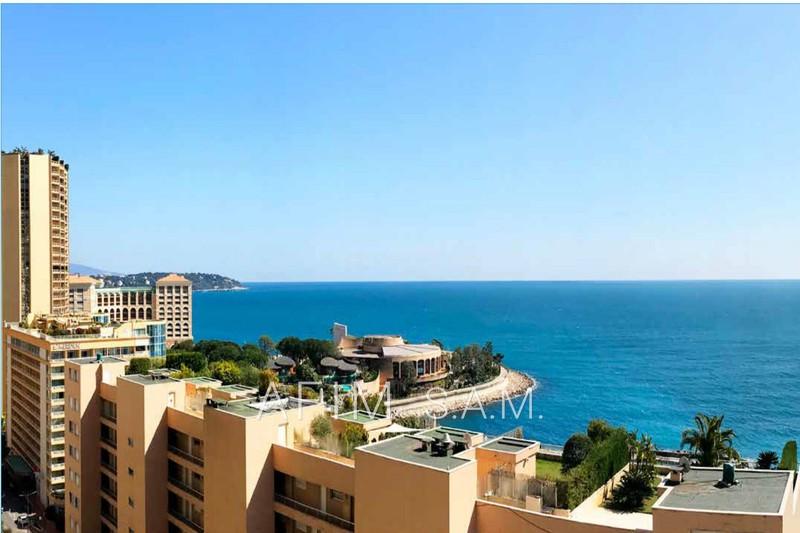 Appartement Monaco   achat appartement  4 pièces   140m²
