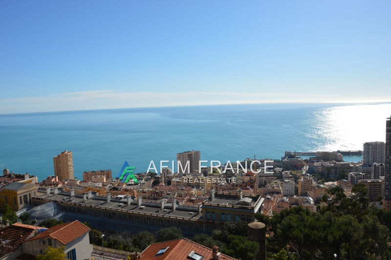 Photo n°2 - Location appartement Beausoleil 06240 - 6 500 €