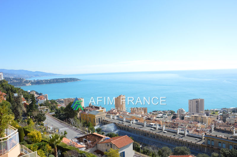 Photo Apartment Beausoleil Moyenne corniche,   to buy apartment  5 rooms   150 m²