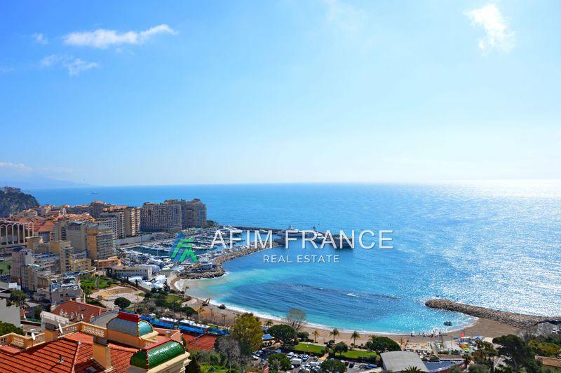 Photo Appartement Cap-d'Ail Proche plages,   achat appartement  4 pièces   114m²