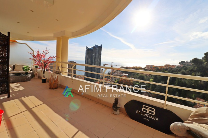 Photo Appartement Beausoleil Moyenne corniche,   achat appartement  2 pièces   52m²