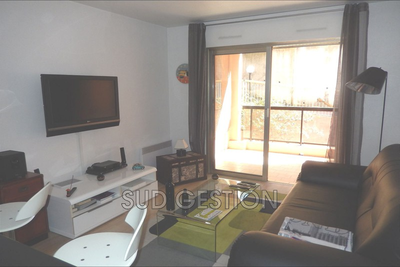 Photo n°4 - Location appartement Mougins 06250 - 750 €