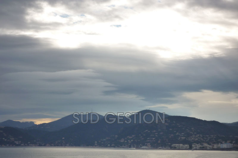 Photo n°7 - Vente appartement Cannes 06150 - 375 000 €