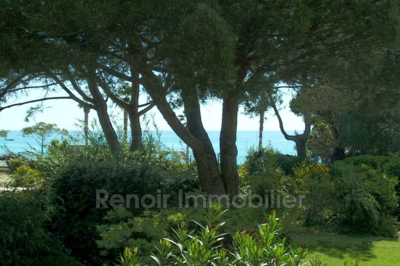 Photo n°4 - Vente appartement Villeneuve-Loubet 06270 - 990 000 €