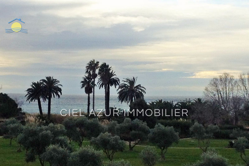 Photo Apartment Juan-les-Pins Bord de mer,   to buy apartment  2 rooms   35 m²