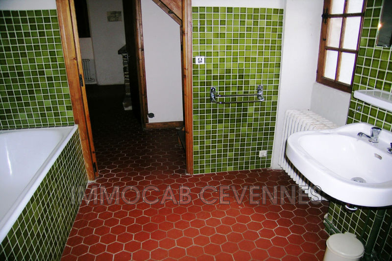 Photo n°8 - Vente Maison mas Saint-Jean-du-Gard 30270 - 232 000 €