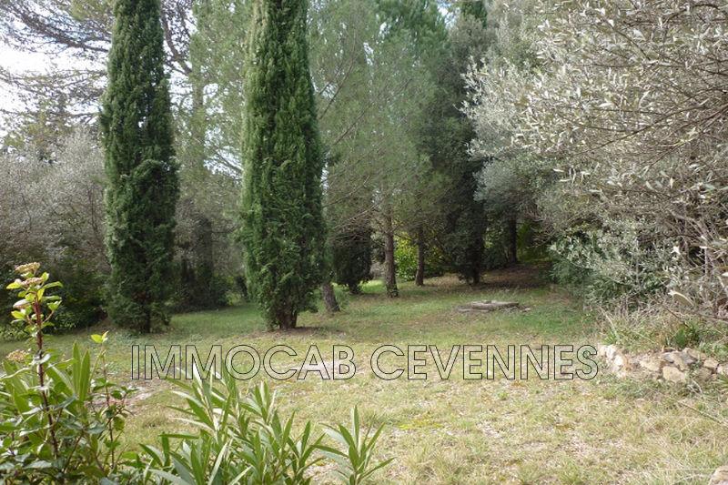 Photo n°3 - Vente Maison mas Anduze 30140 - 549 000 €