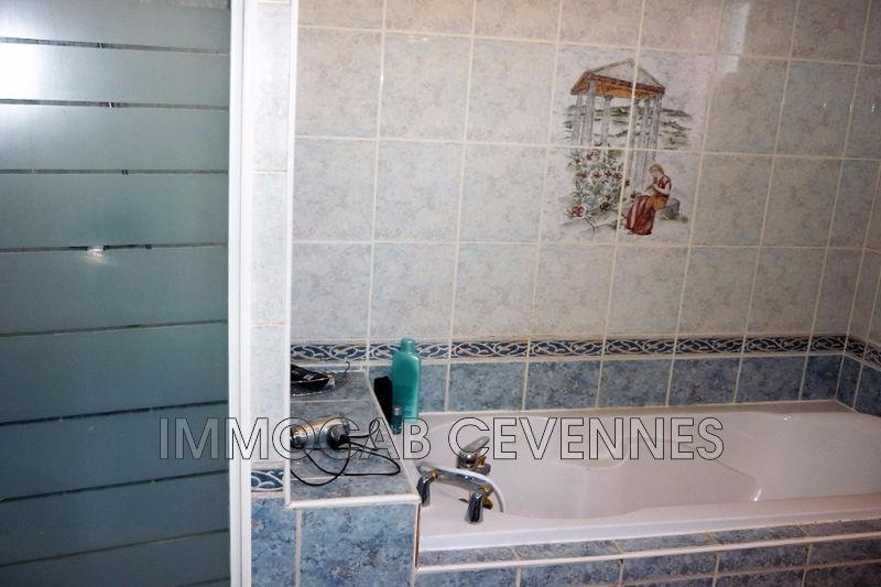 Photo n°5 - Vente Maison villa Saint-Ambroix 30500 - 215 000 €