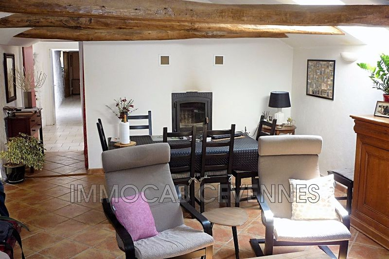 Photo n°4 - Vente Maison mas Le Collet-de-Dèze 48160 - 680 000 €