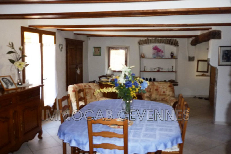 Photo n°5 - Vente Maison mas Alès 30100 - 465 000 €