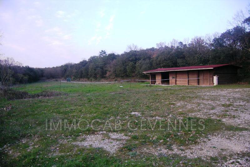 Photo n°5 - Vente Maison mas Alès 30100 - 470 000 €