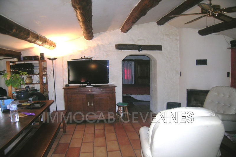 Photo n°7 - Vente Maison mas Alès 30100 - 470 000 €
