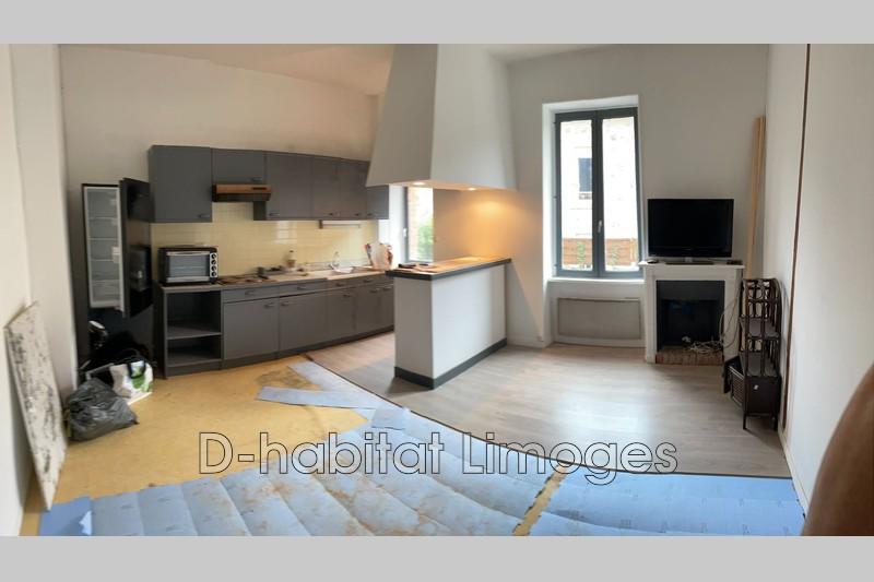 Photo Appartement Limoges Victor thuillat,   achat appartement  2 pièces   39m²