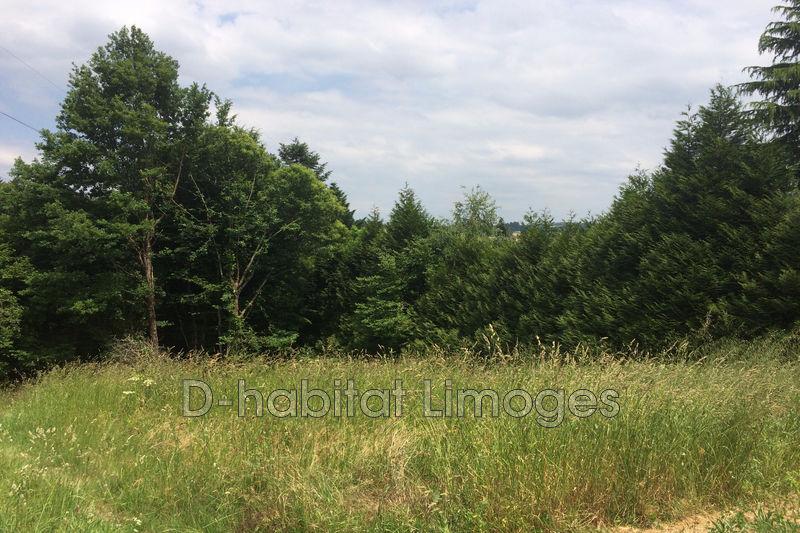 Photo n°2 - Vente terrain à bâtir Saint-Priest-Taurion 87480 - 27 500 €
