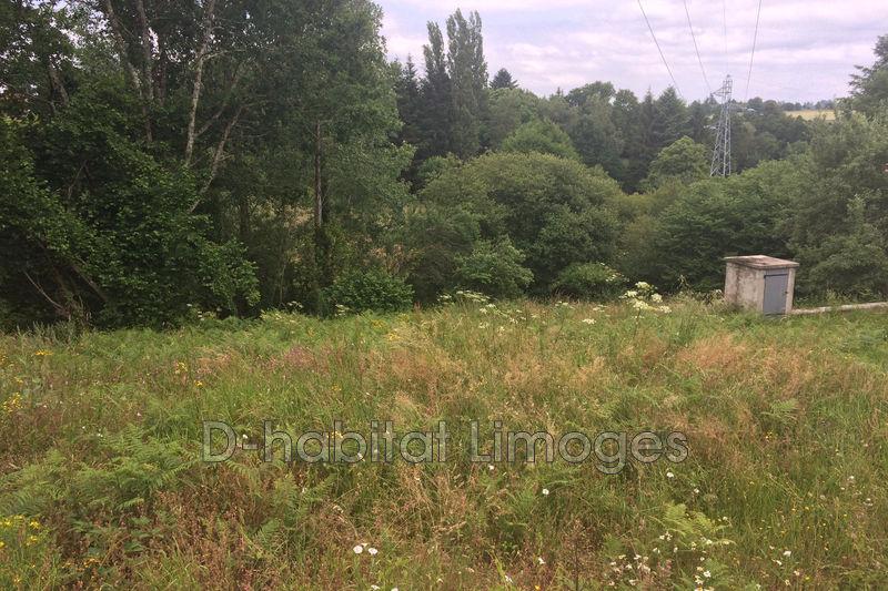 Photo n°2 - Vente terrain à bâtir Saint-Priest-Taurion 87480 - 25 000 €