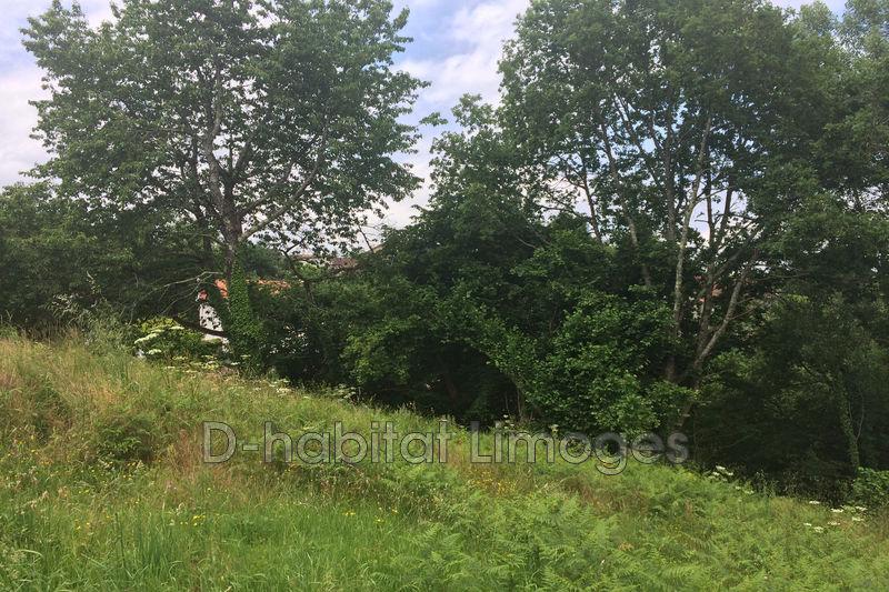 Photo n°3 - Vente terrain à bâtir Saint-Priest-Taurion 87480 - 25 000 €