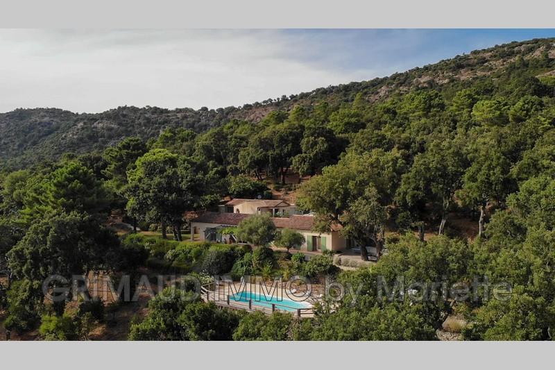 Photo n°2 - Vente Maison villa La Garde-Freinet 83680 - 1 210 000 €