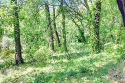 Photos  Terrain à vendre La Garde-Freinet 83680