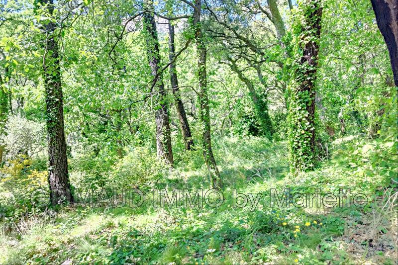 Photo n°2 - Vente terrain La Garde-Freinet 83680 - 315 000 €