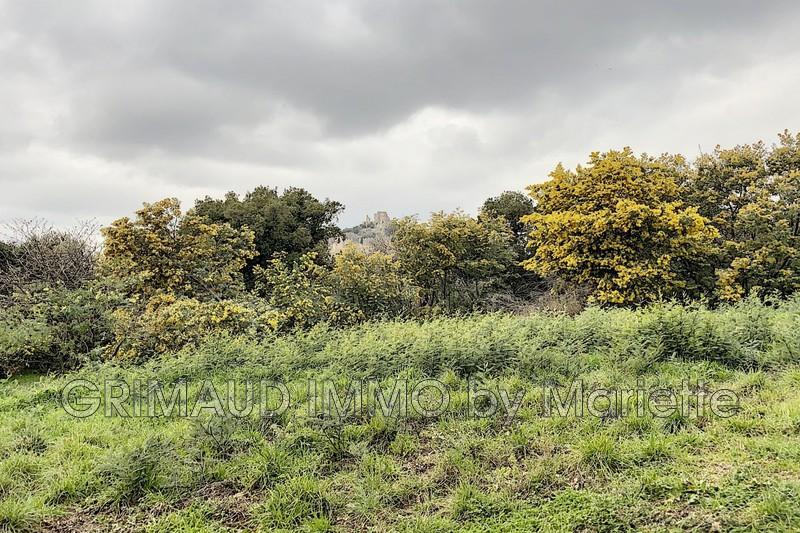 Photo n°4 - Vente terrain Grimaud 83310 - 525 000 €