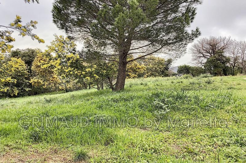 Photo n°5 - Vente terrain Grimaud 83310 - 525 000 €