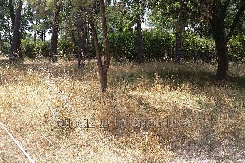 Photo Terrain Mouans-Sartoux Proche toutes commodités,   achat terrain   2706m²
