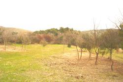 Photos  Terrain à vendre Aurons 13121
