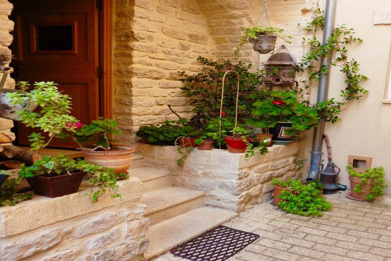Photo Demeure de prestige Calvisson Gard,   achat demeure de prestige  2 chambres   130m²