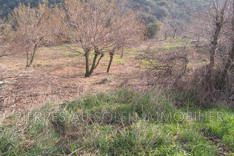 Photo Terrain Carlencas-et-Levas Herault,   achat terrain   800m²