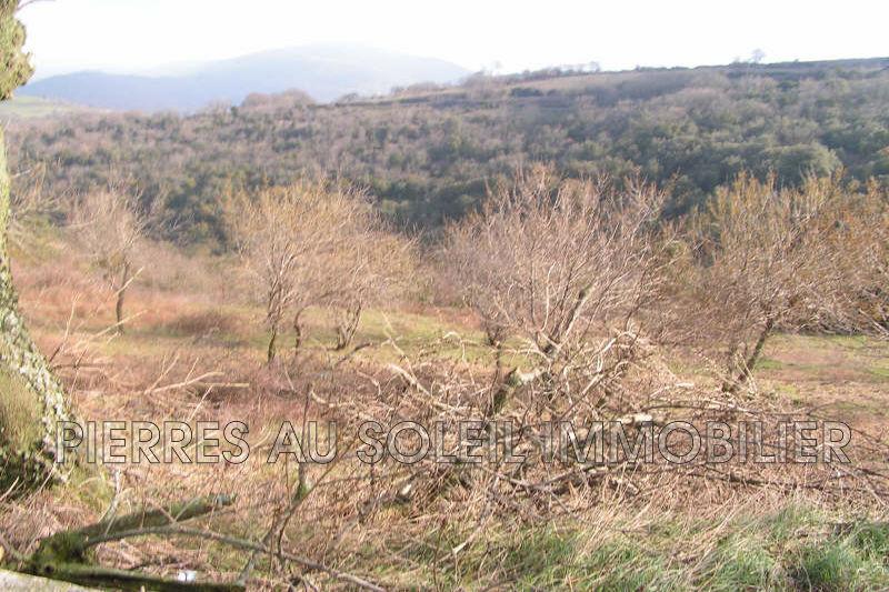 Photo Land Carlencas-et-Levas Herault,   to buy land   750m²