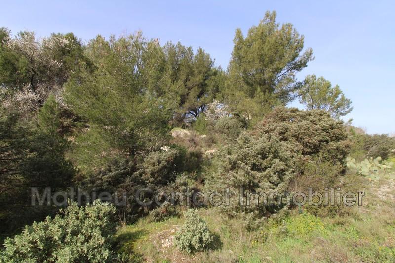 Photo Terrain Cabrières   achat terrain   850m²