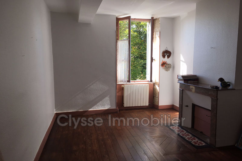 Photo Stone house Castets-en-Dorthe Sud gironde,   to buy stone house  3 bedrooms   250m²