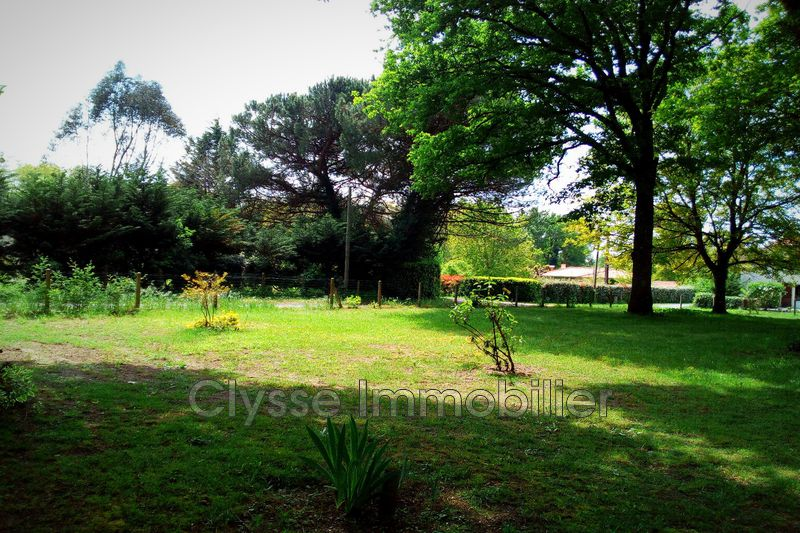 Photo Maison Sauternes Sud gironde,   achat maison  4 chambres   154m²