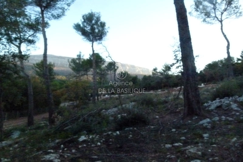 Photo Land Nans-les-Pins Centre-ville,   to buy land   1100 m²